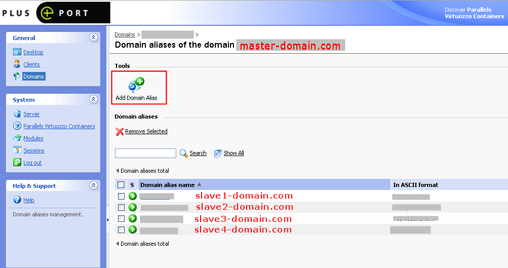 Enter in the master domain definition